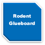 Rodent Glueboards